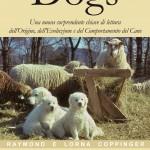 """Libro """"Dogs""""+ DVD """"Uomo e cane"""""""