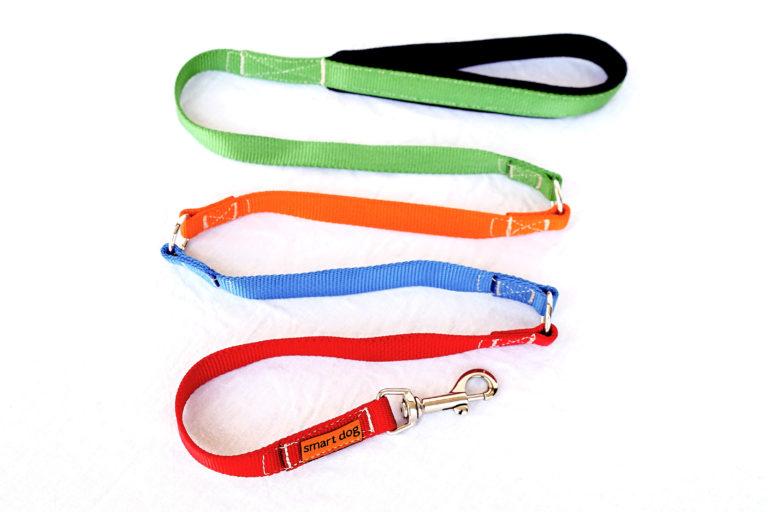 Guinzaglio Multicolor per Cani